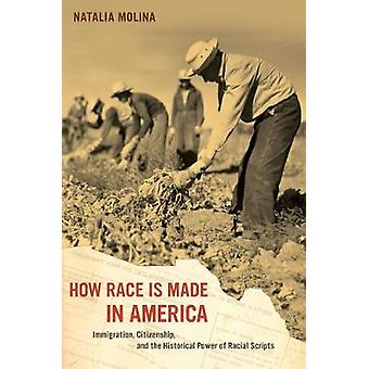 How Race Is Made in America by Molina