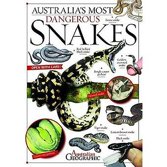Australia's Most Dangerous Snakes by Kathy Riley - 9781742455075 Book