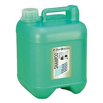 San Bernard Green Apple Shampoo 5000 Ml. (Dogs , Grooming & Wellbeing , Shampoos)