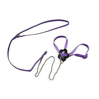 (Purple) Adjustable Pet Parrot Bird Outdoor Harness Leash Flying Training Anti Bite Rope