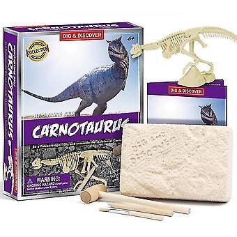 Jouets de fouille archéologique fossile de dinosaures pour enfants de 6 ans et plus (D7149)