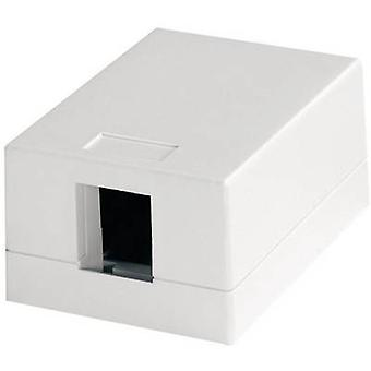 Telegärtner Network outlet Surface-mount Unequipped 1 port Alpine white
