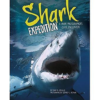 Shark Expedition: Incontri ravvicinati di un fotografo di squalo
