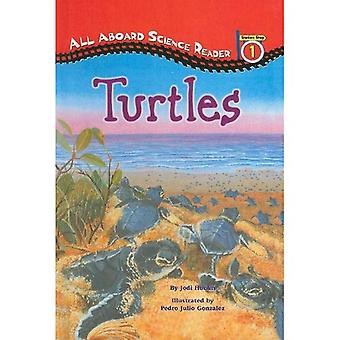 Schildkröten (alle an Bord Science Reader: Stufe 1 (Pb))