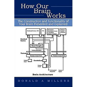How Our Brain Works  The Construction and Functionality of Your Brain Presented and Explained by Millers Donald Millers & Donald Millers