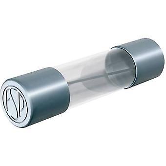 P-schel FSM1,6B Micro fusible (x L) 5 mm x 20 mm 1.6 A 250 V Medio time-lag -mT- Contenido 10 ud.)