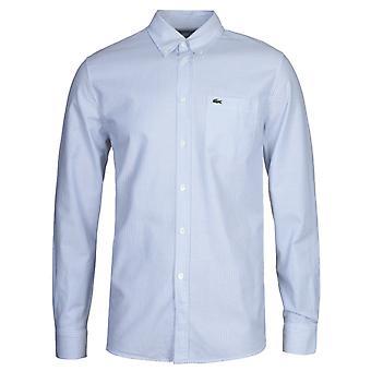 Camisa de Oxford Listrada Azul Lacoste