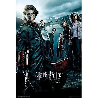 Harry Potter y el cáliz del cartel de fuego Daniel Radcliffe, Clmence Po'sy, Robert Pattinson, Stanislav Ianevski. 91,5 x 61 cm