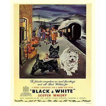 Vintage Metal Sign Retro Publicité Noir &Blanc Scotch Whiskey