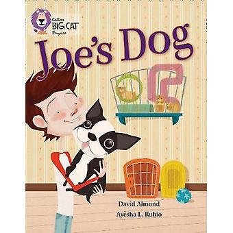 Joe's Hond