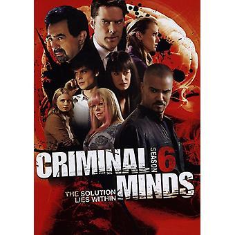 Criminal Minds - Criminal Minds: sæson 6 [DVD] USA import