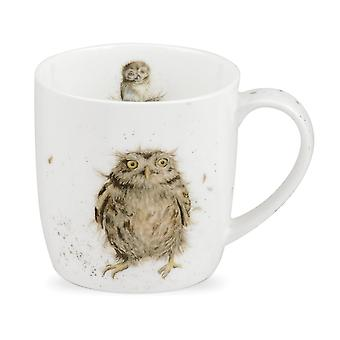 Royal Worcester Wrendale What a Hoot Owl Single Mug