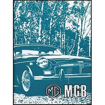 MG MGB Tourer en GT: eigenaren handboek