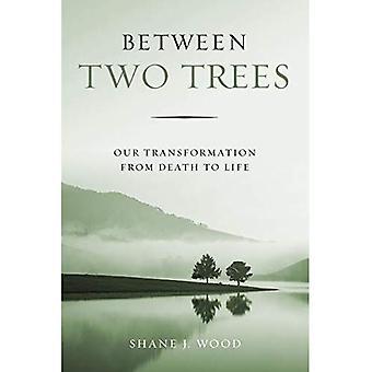 Kahden puita: Meidän siirtymistä kuolemasta elämään