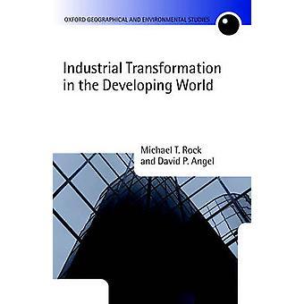 Transformation industrielle dans le monde en développement par Michael T Rock