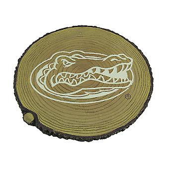 Florida Gators Glow In the Dark Tree Stump Stepping Stone