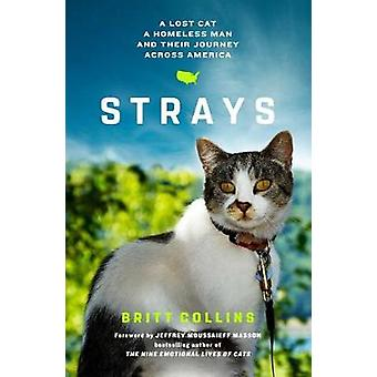 Strays - A Lost Cat - a Homeless Man - and Their Journey Across Americ