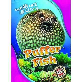 Puffer Fish by Rebecca Pettiford - 9781626175723 Book