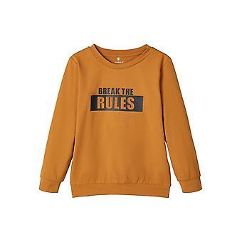 Name-it Jongens Tshirt Boralle Bone Brown