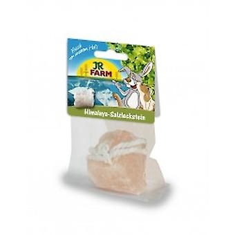 Jr Farm  Himalaya salt licking stone (Small pets , Food Supplements)