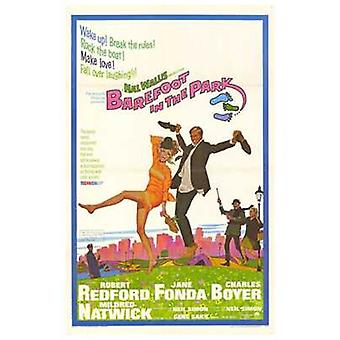 Barefoot in the Park Movie Poster (11 x 17)