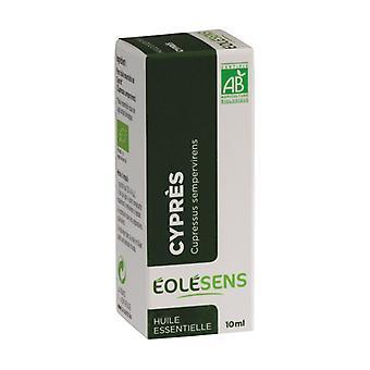 Cypress 10 ml of essential oil