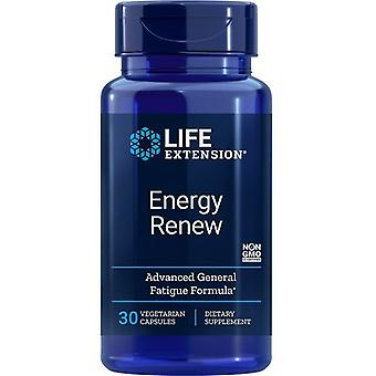Life Extension Energy Renew Vegicaps 30