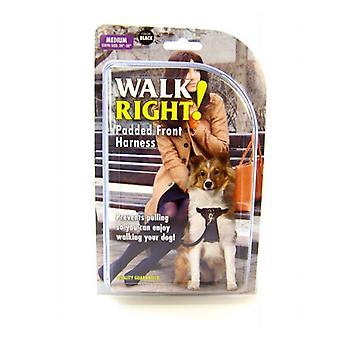 "Coastal Pet Walk Right Padded Harness - Black - Medium (Girth Size 20""-30"")"