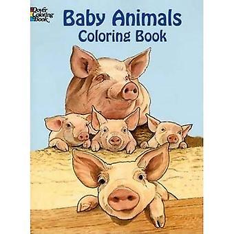 Bébés animaux Coloring Book (livres à colorier Dover)