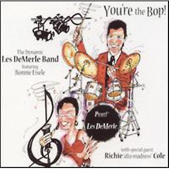 Demerle/Eisele - You're the Bop [CD] USA import