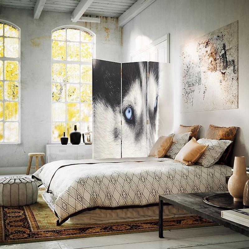 Diviseur de chambre, 3 panneaux, Double-Sided, Toile, Husky sibérien 2