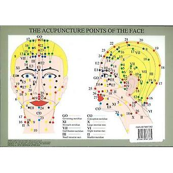 Acupuncture Points of the Face  A4 by Jan Baarle