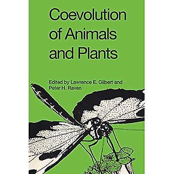 Samevolution av djur och växter: Symposium V, första internationella kongressen för systematisk och evolutionär biologi, 1973