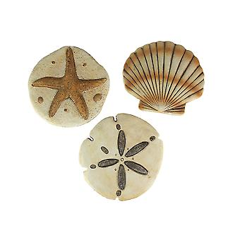 Set of 3 Cement Sea Shell Stepping Stones Hanging Sand Dollar Starfish Scallop
