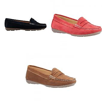 Hush Puppies Womens/Ladies Margot Suede Leather Loafer Shoe