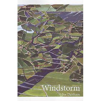 Windstorm by Joe Denham - 9780889712430 Book