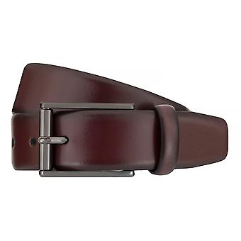 Strellson belts men's belts leather leather belt Bordeaux 7569