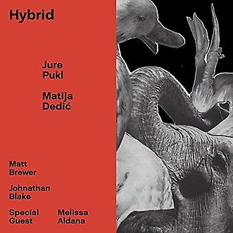Pukl, Jure / Dedic, Matija - Hybrid [CD] USA import
