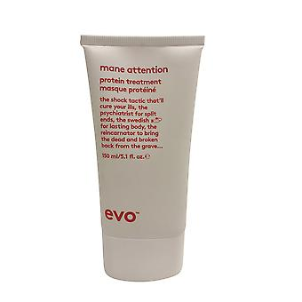 evo Mane Attention Protein Treatment 5.1 OZ