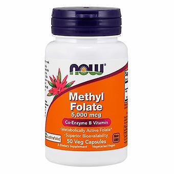 Jetzt Lebensmittel Methyl Folat, 5000 mcg, 50 Veg Caps