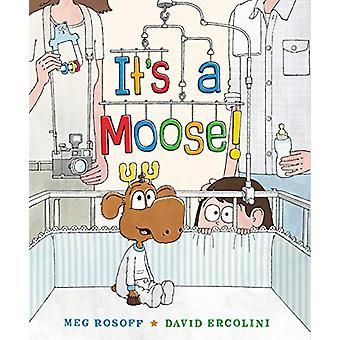 It's a Moose! by Meg Rosoff - 9780399166648 Book