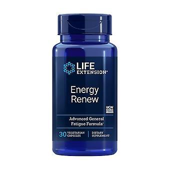 Energy Renovator 30 vegetable capsules