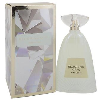 Blooming Opal Eau De Parfum Spray By Thalia Sodi 3.4 oz Eau De Parfum Spray