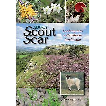 About Scout Scar - Looking into a Cumbrian Landscape by Jan Wiltshire