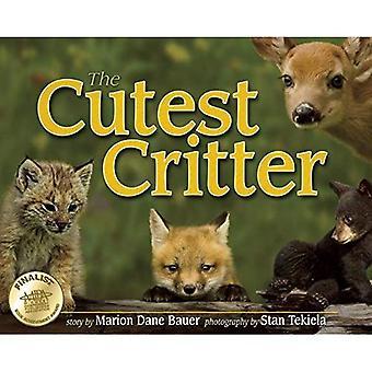 De leukste Critter