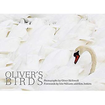 Aves do Oliver: por Oliver Hellowell