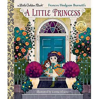 Een prinsesje (gouden boekje)