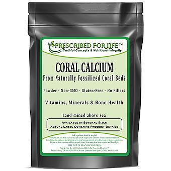 Calcium de corail-poudre de lits de corail naturellement fossilisés-terres exploitées au-dessus de la mer