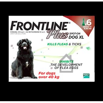 Frontline Plus X-Large Dogs 89-132lbs (40-60kg), 6 Pack