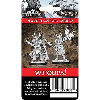 パスファインダーの戦いとWizKidsディープカットウェーブ10 - 小売リオーダーカード